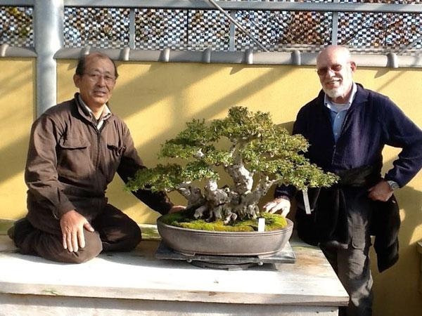 Mel Goldstein bonsai