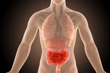 A 3d illustration of the human body with crohn's disease