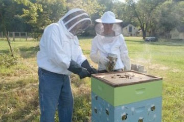 Two people beekeeping