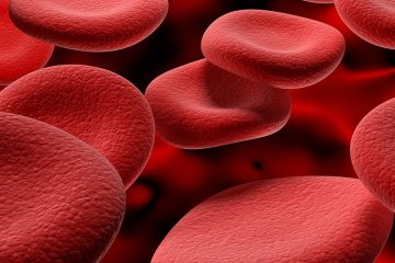 Close-up of red blood cell illustration