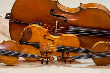 Photo of string instruments