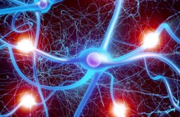 Artist's rendering of neurons