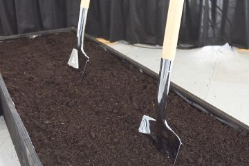 Photo of shovels in dirt at groundbreaking of the Dental Clinic