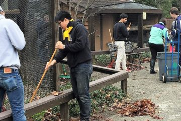 Students volunteer by raking leaves and cleaning up at the Lake Erie Nature Center