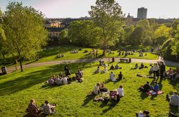 people in a park on picnics