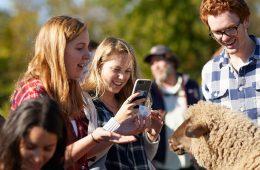 Case Western Reserve University students gathered around a sheep