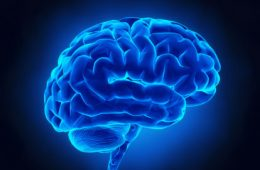 Blue model of brain on black background