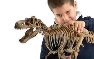 child playing with dinosaur model on white background
