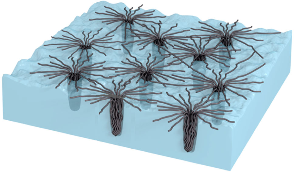 diagram of bundled carbon nanotubes penetrating and forming web-like structures on a copper foil surface.