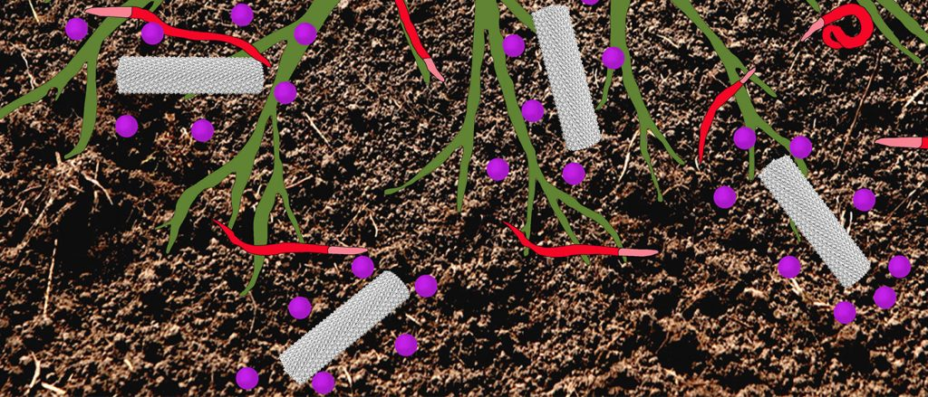 A diagram of corn plant roots with nematodes and pesticide-carrying tobacco mild green mosaic virus in the dirt.