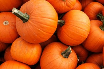 Photo of pumpkins in a pile