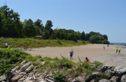 People cleaning up a Lake Erie beach with trees in the background and rocky area in foreground