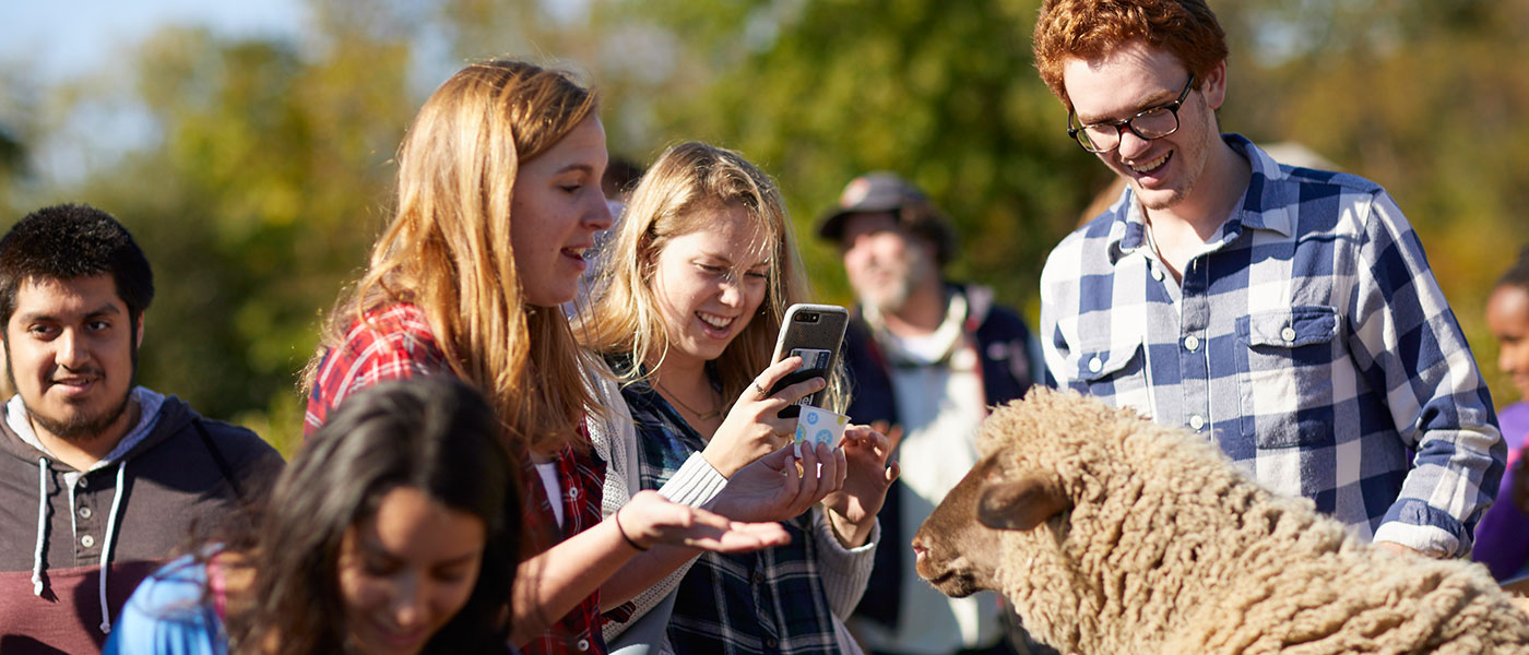Case Western Reserve University students gathered around a sheep