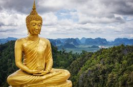 gold buddhist statue in front of forest-covered mountains