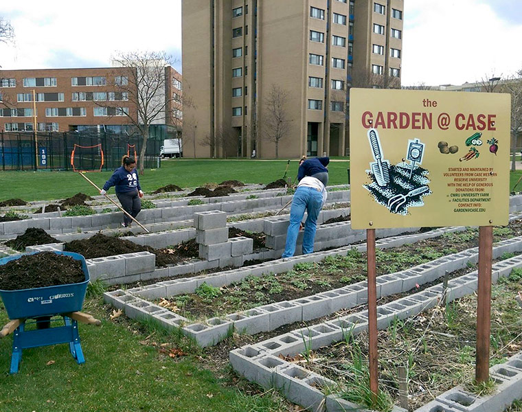 A photo showing plant beds at the Garden@Case