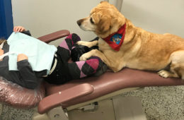 little girl and a therapy dog lying together in the dentist office