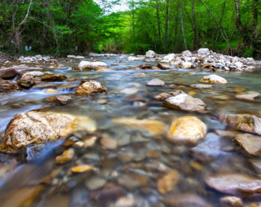 a shallow river with rocks