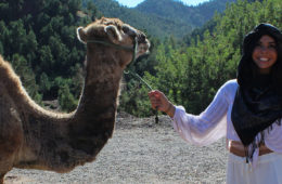 Photo of a CWRU student posing with a camel on a study abroad trip