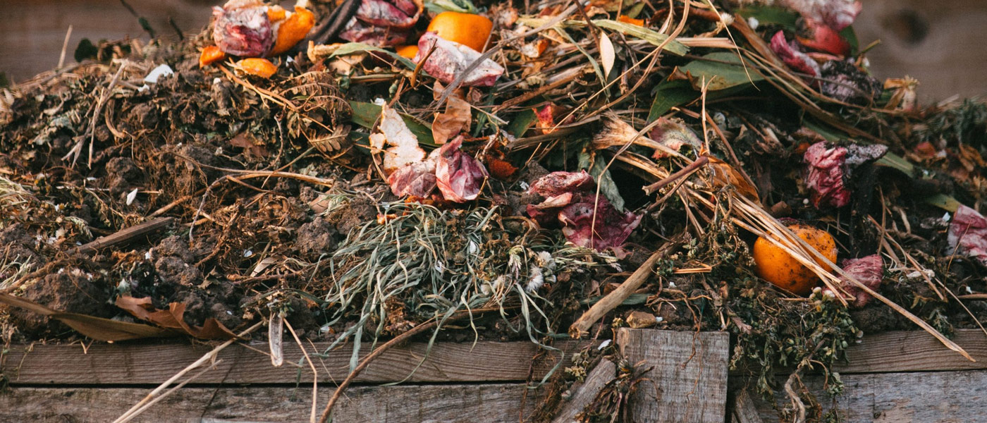 Photo of a compost pile