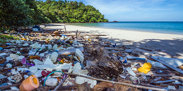 photo of plastic and other waste lining a beach