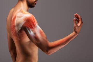 Photo of a man's arm anatomy